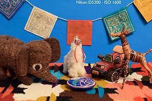 Nikon-D5300-Experience-ISO