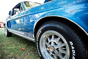 Nikon_D7200_Experience-Mustang